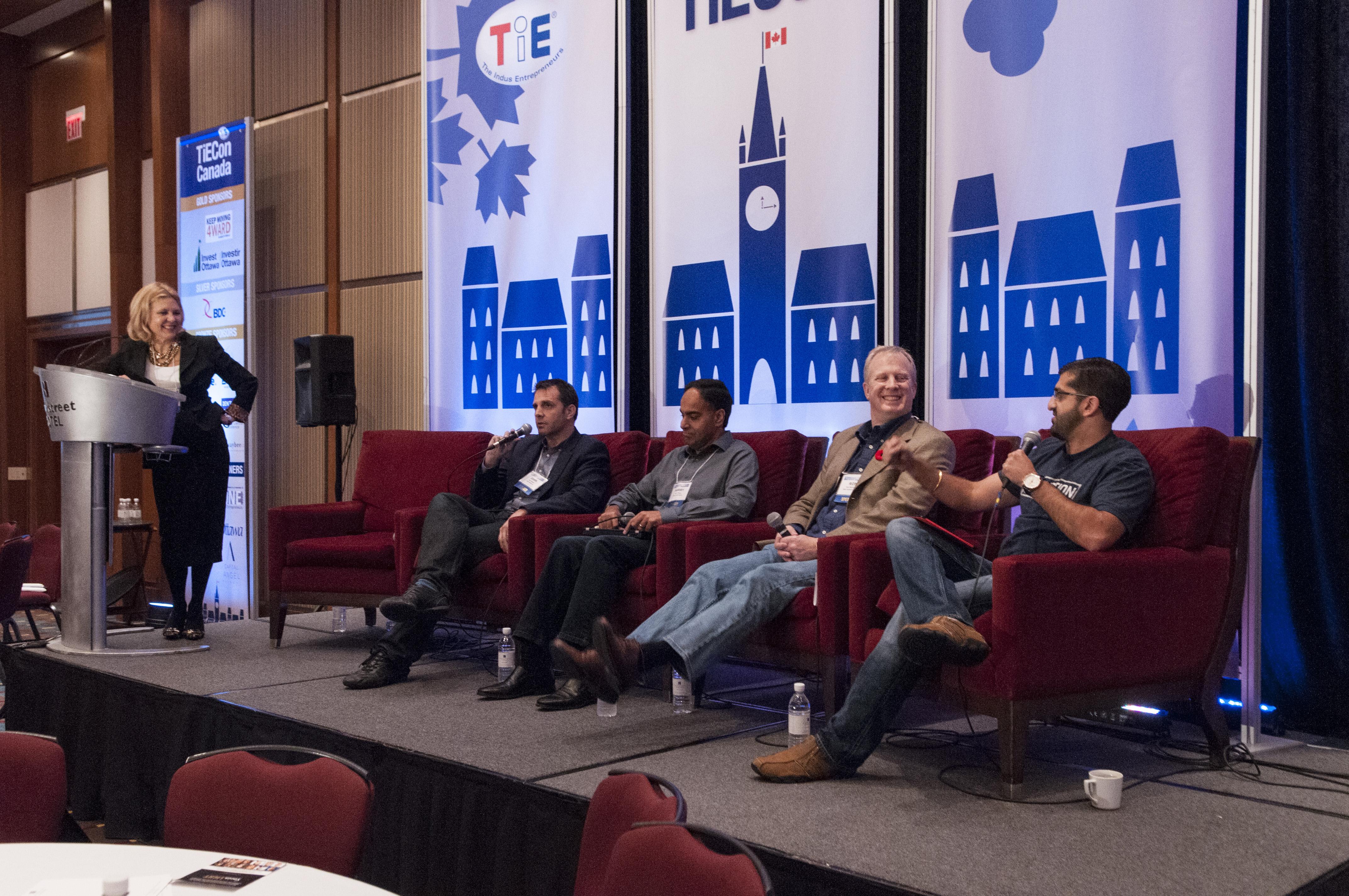 TieCon2013 Investor Panel